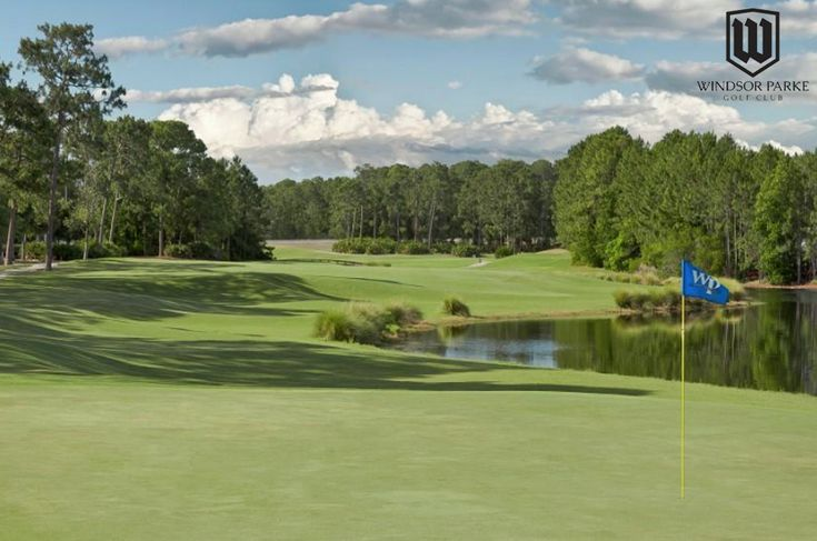 Pin on Golf