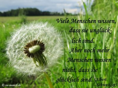 #Zitat von Albert Schweitzer  #Zitate #Sprüche #Spruch