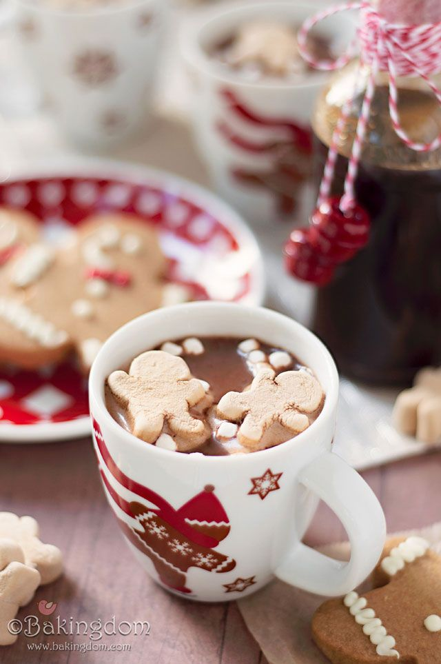 """""""Gingerbread Hot Cocoa Recipe"""" .... with homemade gingerbread syrup !"""