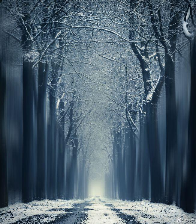 Tips voor het fotograferen van sneeuw