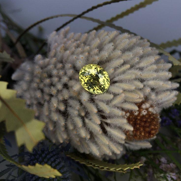 Greenish yellow chrysoberyl 5.12 ct Price: $1300 Clarity: VS Dimensions (mm): 10,96x9,10x6,81 Origin: Sri Lanka ID: hb-1505-51  Worldwide shipping include! For any questions, please contact us Direct/Viber/Whatsapp: +94(77)8975577 #chrysoberyl #sapphireblue #chrysoberylstone #chrysoberylcateye #chrysoberylcatseye #chrysoberil #jewelry #graff #cartier #weddingidea