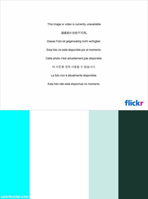Petronas Logo Color Scheme