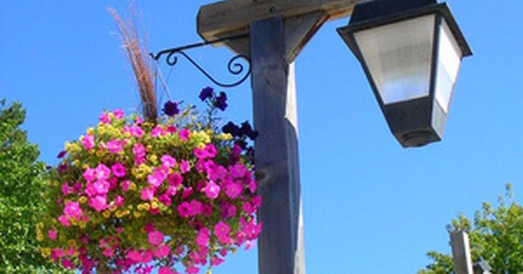 Como pendurar vasos de flores em um poste de luz?. Lindos caramanchões de cestas de flores e caixas de plantas enfeitam os postes de iluminação de pequenas cidades dos Estados Unidos. Essas cidades e vilas colocam cestas cheias de flores naturais, utilizando suportes projetados especificamente para a plantação suspensa de flores. Pendure-os no alto de seu poste de luz ou, na próxima reunião do ...
