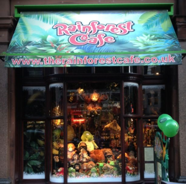 Christmas window decorations! http://www.therainforestcafe.co.uk/christmas.asp