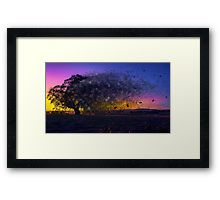 The Sandblasted Sunrise Framed Print