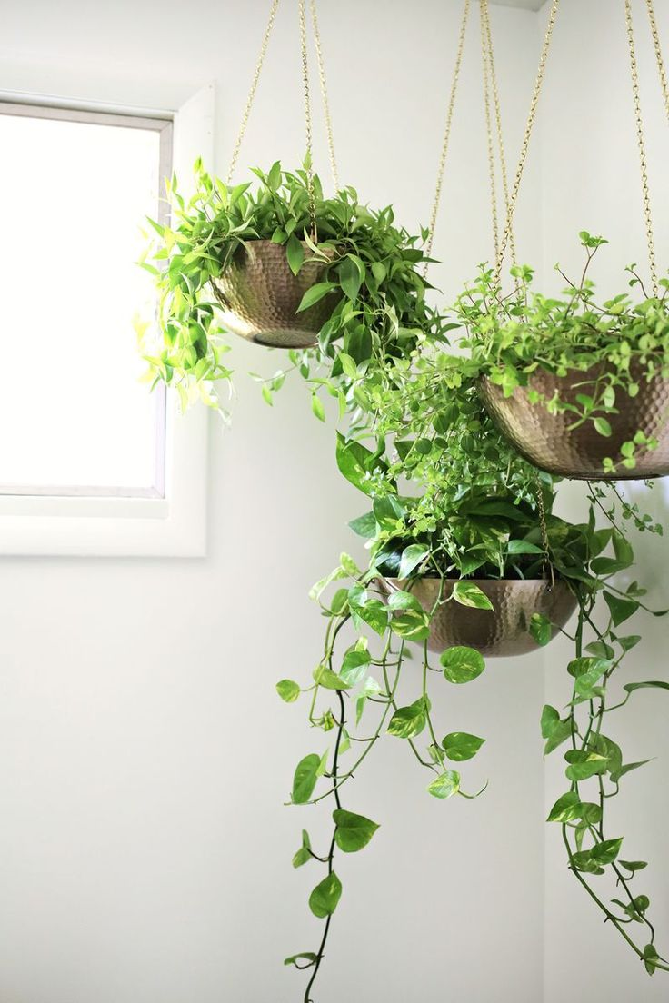 Hanging planters out of metal bowls—love this! (click through for tutorial)  | D.I.Y. home decor | Pinterest | Planters, Hanging planters and Love this - Hanging Planters Out Of Metal Bowls—love This! (click Through For