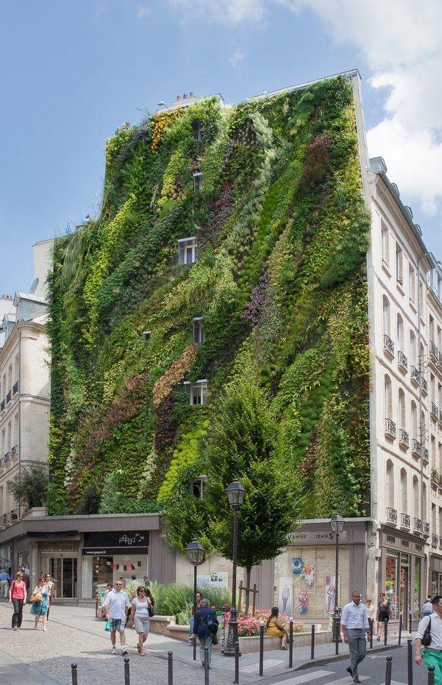 L'Oasis d'Aboukir, Paris, angle rue d' Aboukir - rue des Petits Carreaux   Vertical Garden Patrick Blanc