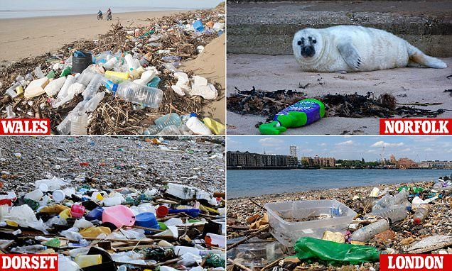 Nearly 1,000 pieces of litter are discarded for every 100 metres of coastline – with single-use containers most at fault according to new research by the Marine Conservation Society.