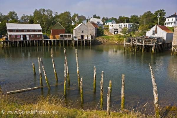 Grand Manan, N.B. this is seal cove with the tide in. this is where my dads from