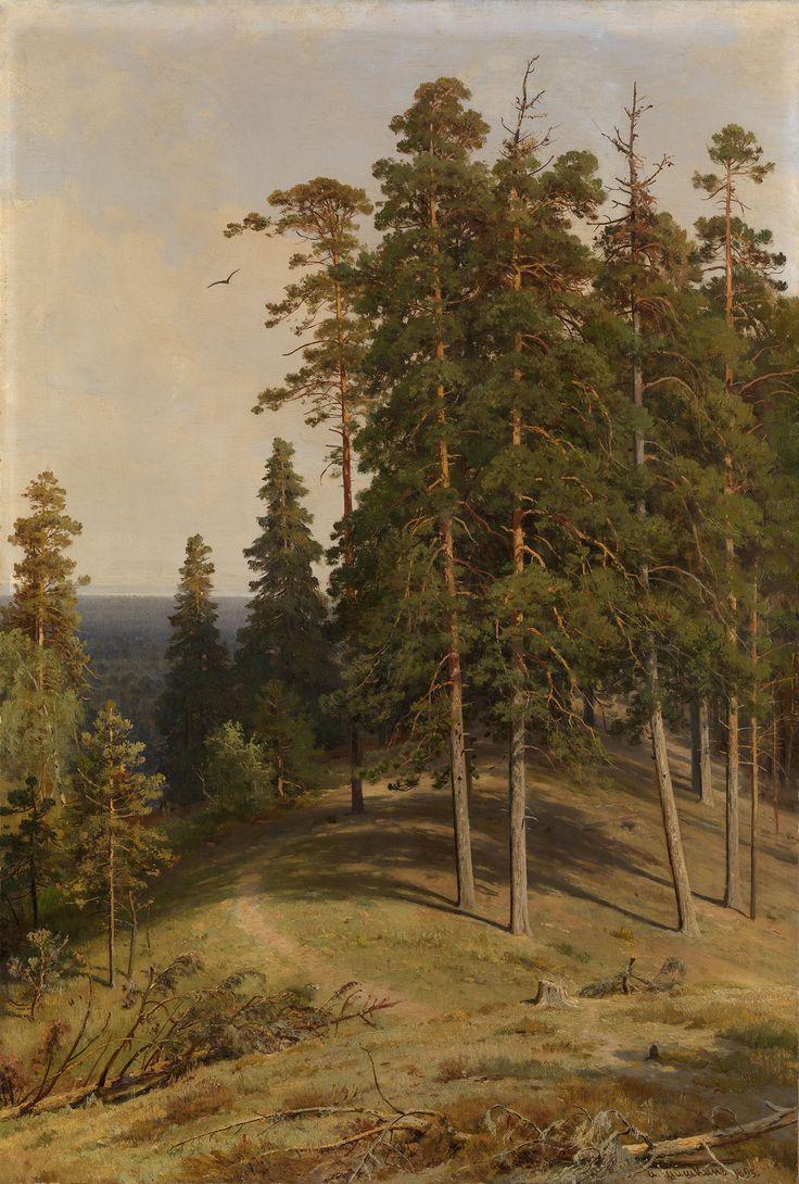 Шишкин. Сосновый лес