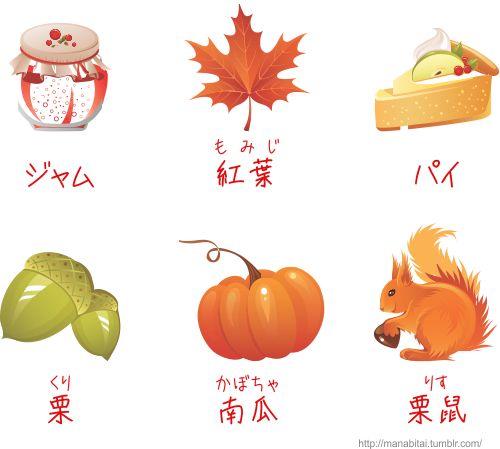 外国人はこういうので日本語を学んでいるらしい〰(^w^) 栗鼠(りす)知らない~