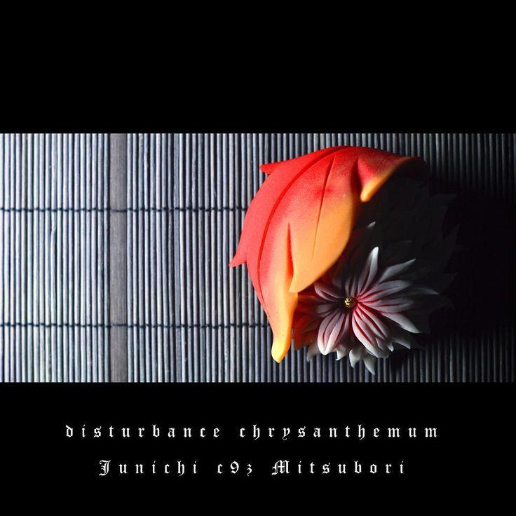 Disturbance chrysanthemum