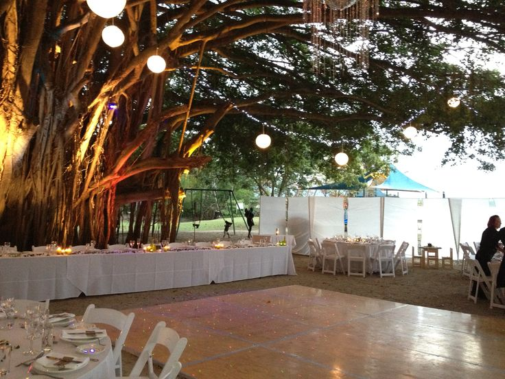 Rex Smeal Park- Dinner and Dancing under the fig tree