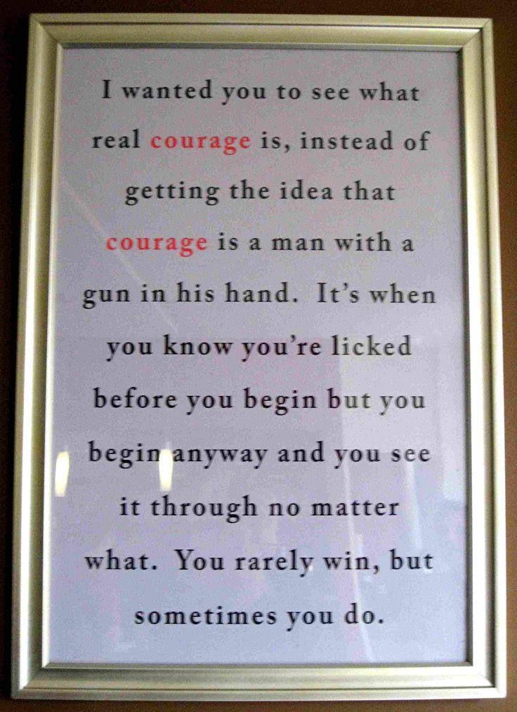 Atticus Finch quote on courage  To Kill A Mockingbird