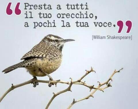 W Shakespeare