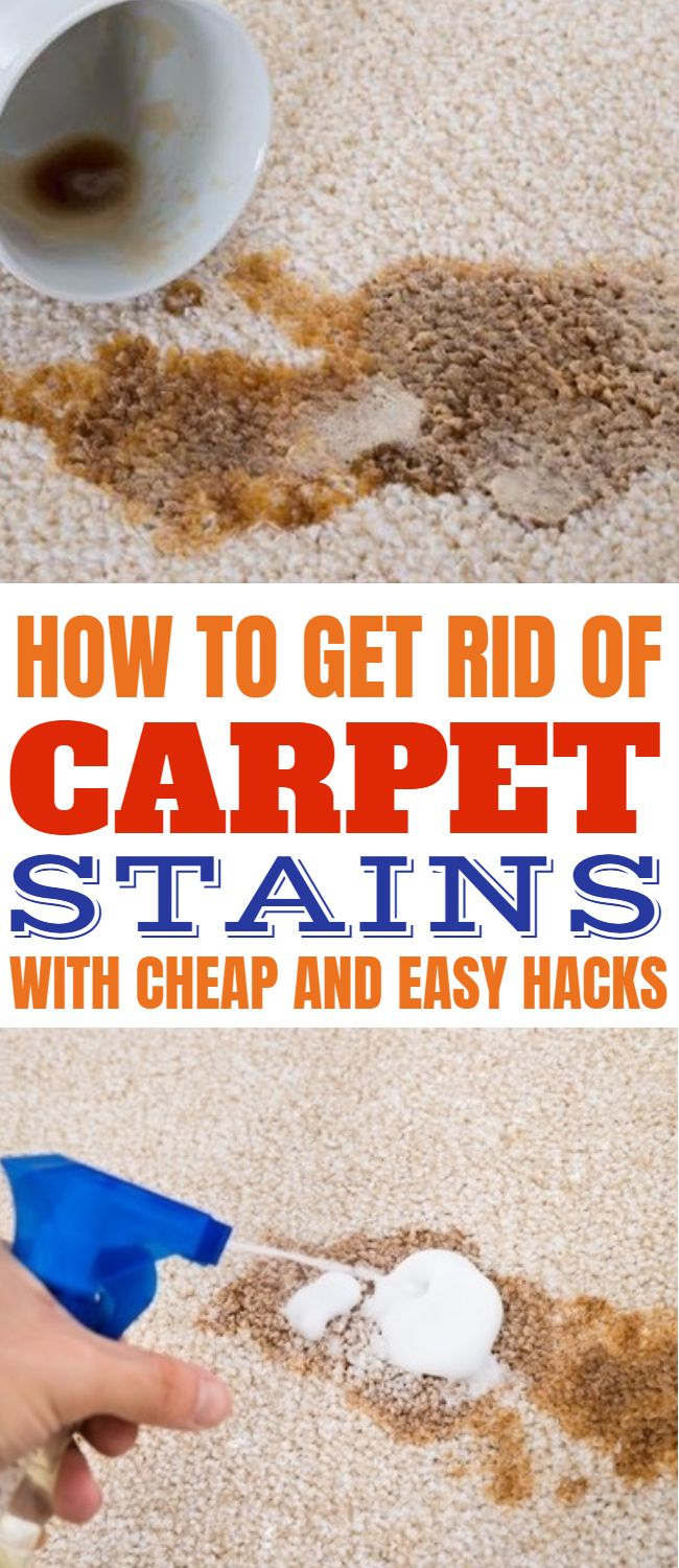 How to get rid of carpet stain in your home with smart and ...