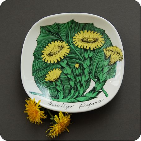 arabia finland plate  An attractive pin dish or plate in excellent condition, designed by Esteri Tomula, for Arabia.  This is from the Botanica series of decorative plates and features flowers and foliage of Tussilago Farfara, or Coltsfoot as it's more commonly known.   Dimensions  Height