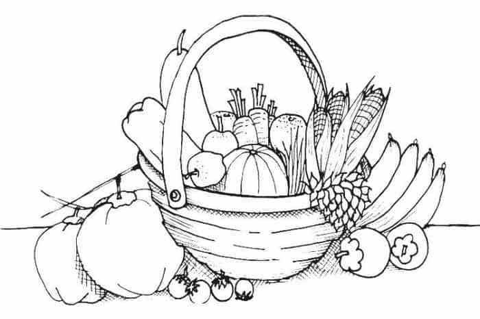 Gambar Mewarnai Buah Buahan Image Vegetable Coloring Pages