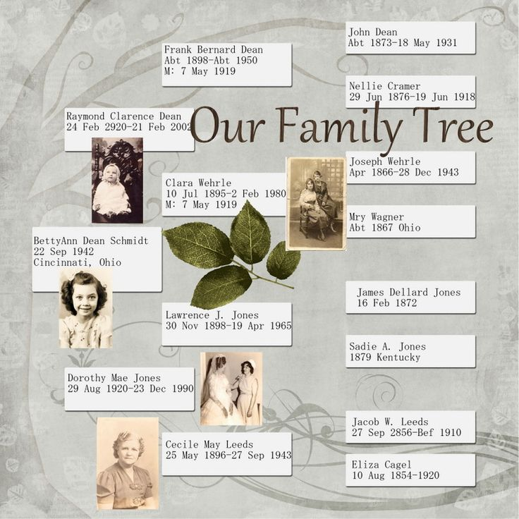 How to Start a Family History Paper