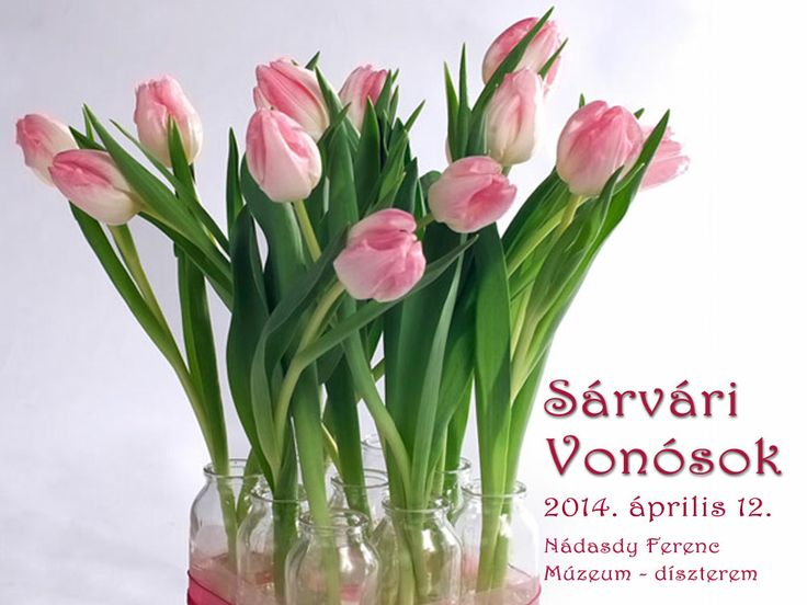A Sárvári Vonósok tavaszi koncertje a Nádasdy Múzeumban