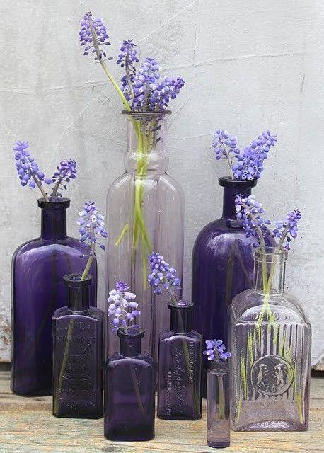 Lavendar bottles with grape hyacinths.