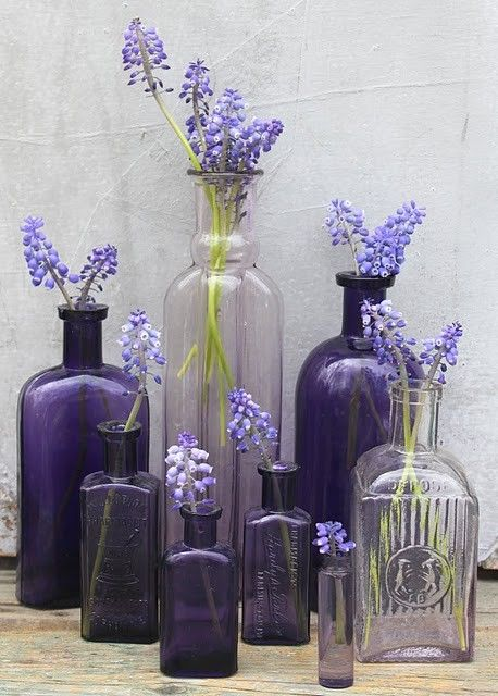 very calmingDecor, Ideas, Vintage Bottle, Colors, Glasses Bottle, Old Bottle, Purple Glasses, Jars, Purple Flower