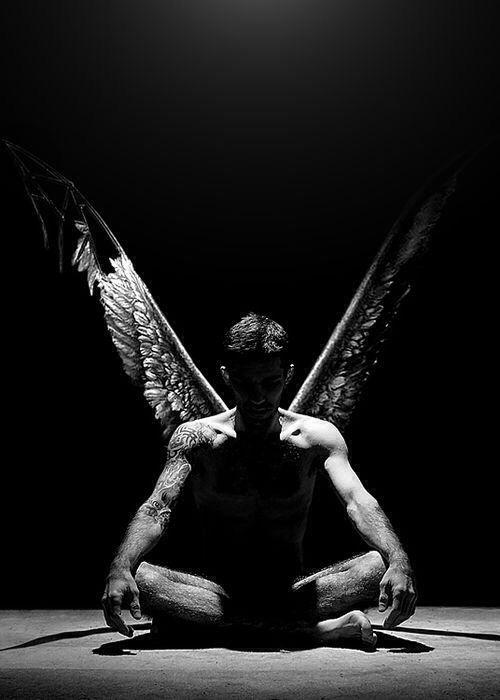 Human bird | Human birds | Pinterest
