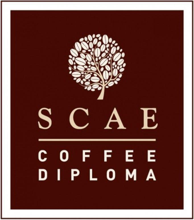 adesso SCAE coffee diploma da Pascucci