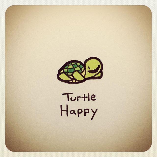 Turtle Happy