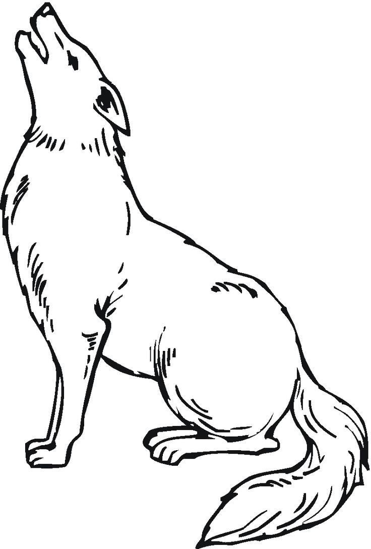 Coloring Coyote Free Kids Pages Printable Coyote Drawing Coloring Pages Coloring Pages For Kids