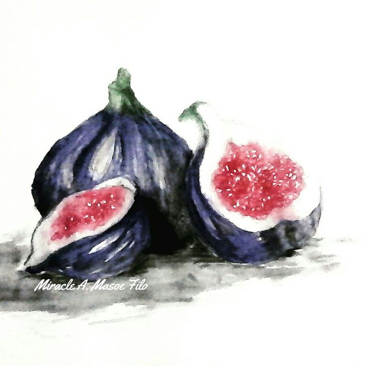 Watercolor project of a life still pic I painted for my art homework   #fig #fruit #watercolor #miraclemasoefilo #art #artwork #color #painting