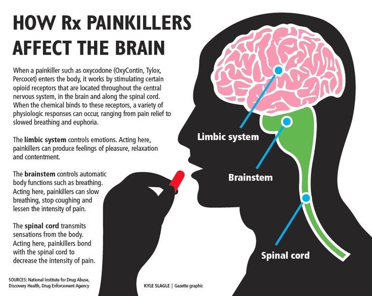 The opioid effect: New study offers insights into brain's response to addictive painkillers