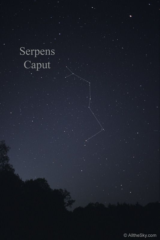 Serpens Caput: The snakes head - Grasped in Ophiuchus's left hand - Dividing its body.
