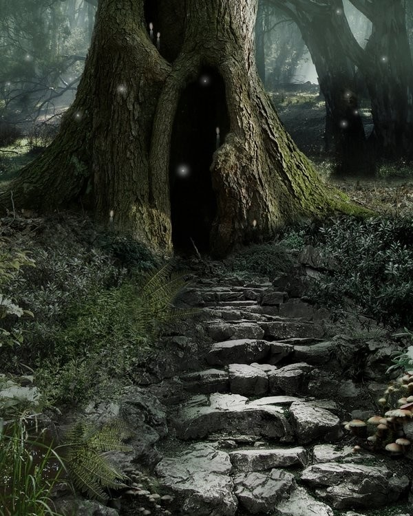 And the cobbled path she followed led directly into a tree.  She paused, but could not give up her quest after all the effort, so . . .  EDK