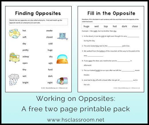 Opposites Worksheet Printable Packet | To work, Work on and Worksheets
