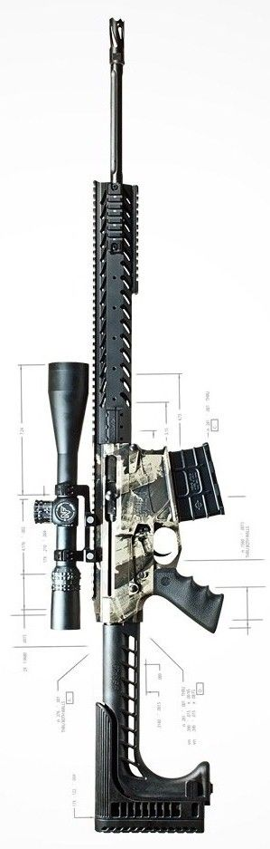 Nemo Arms Omen rifle - an AR-15 variant chambered in .300 Winchester Magnum