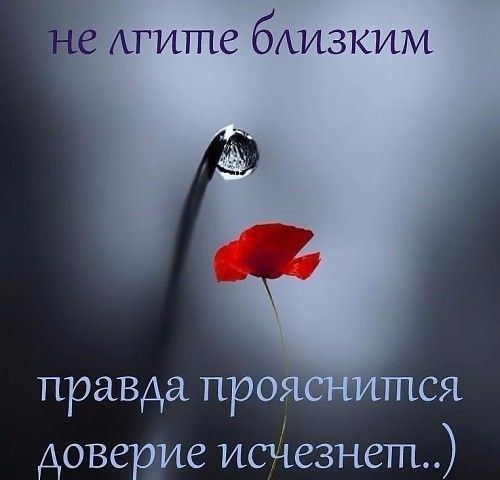 Дневник Незнакомка, 55 лет, г. Таганрог - Сайт знакомств 24open.ru — знакомства без регистрации для серьезных отношений. Бесплатная служба знакомств с мобильной версией, познакомиться с девушкой или парнем.