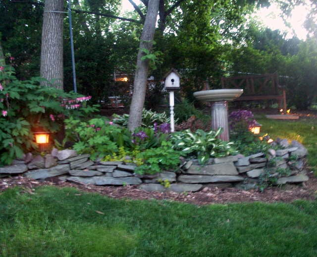 44 Best Images About Shady Rock Garden On Pinterest