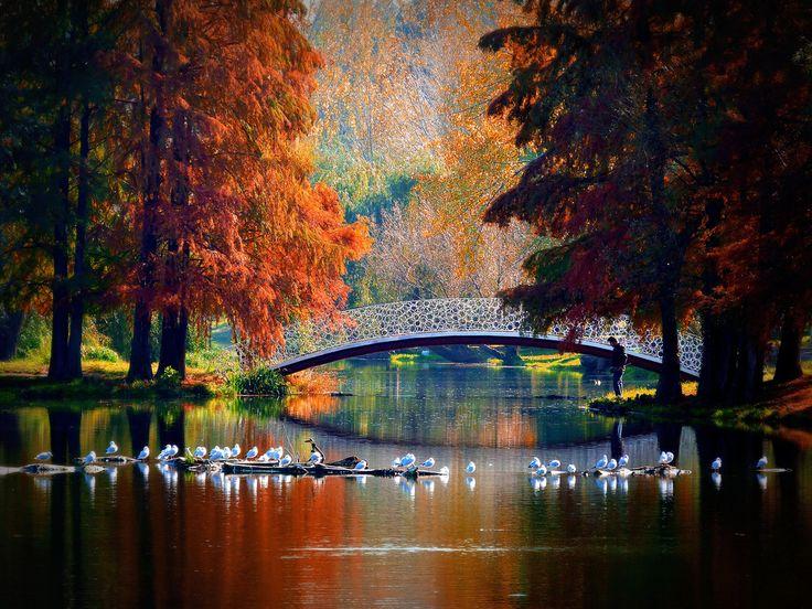 Bucharest, Romania (by Dumby)