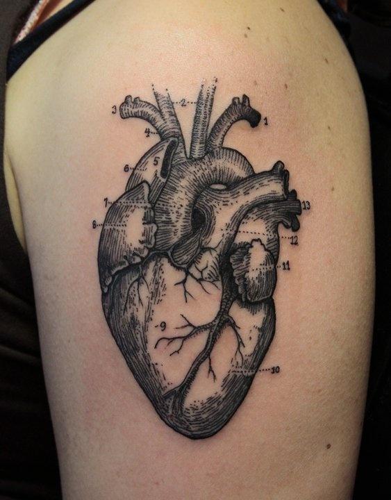 Heart diagram tattoo