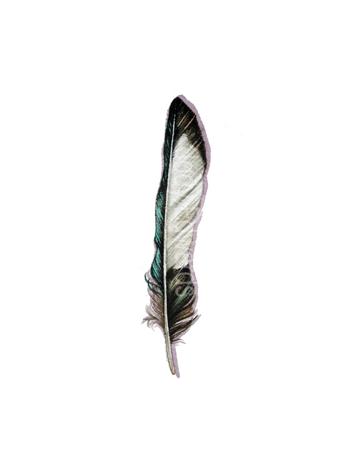 Magpie Feather - Original Watercolor - Nightly Study 514