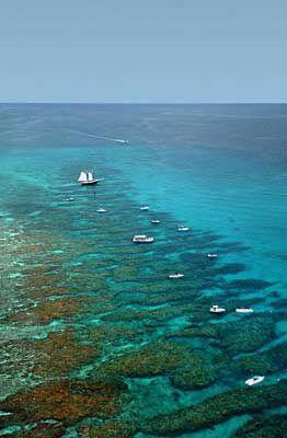 Great diving and snorkeling at Looe Key National Marine Sanctuary near Big Pine Key, FL