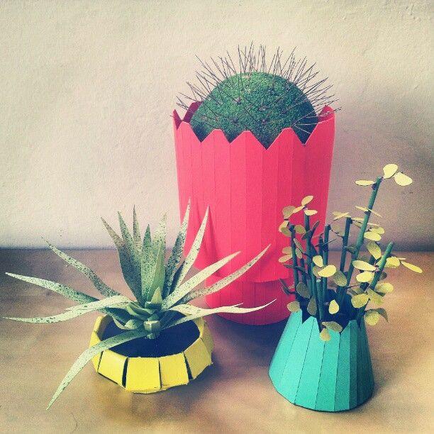 """Our new """"indoor garden"""" of paper plants."""