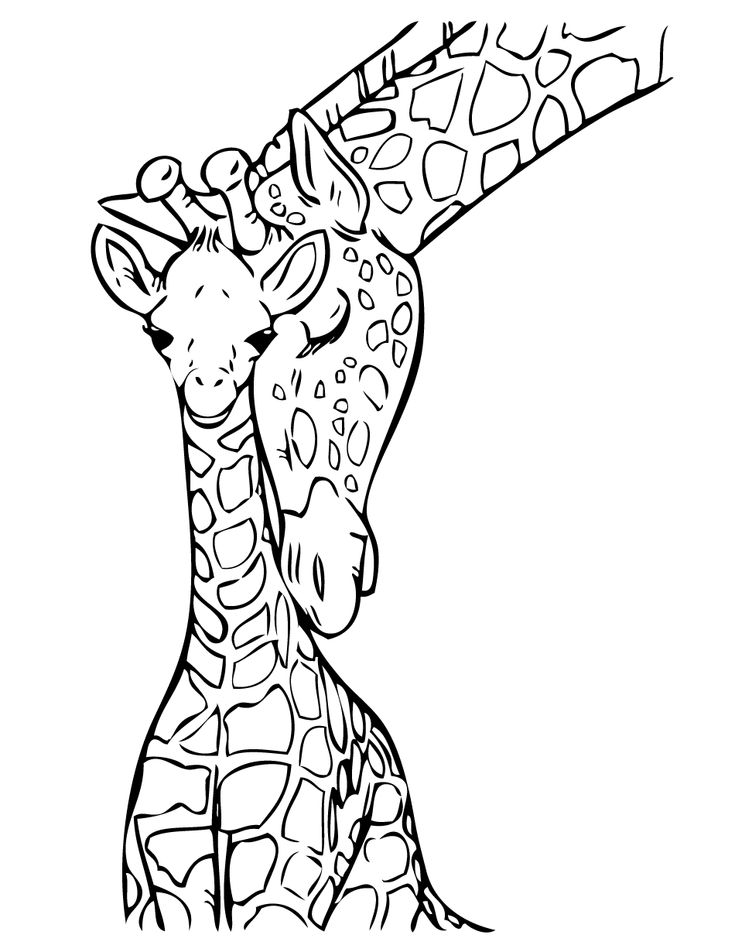 Giraffe outline for coloring pages ~ Baby Giraffe Coloring Page | Free Printable Coloring Pages ...