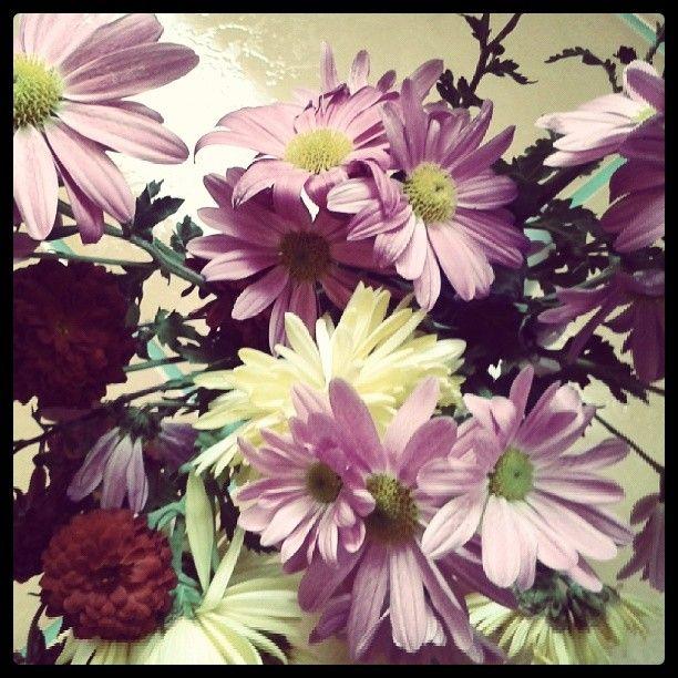 .@Incognito7dcv CarelessWhisper | Autumn flowers 1
