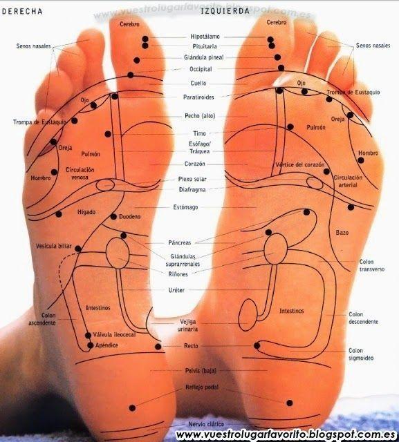 TUS PIES HABLAN SOBRE TU SALUD ¿Sabías que por medio de los pies podemos identificar problemas de salud, tanto físicos como emocionales?