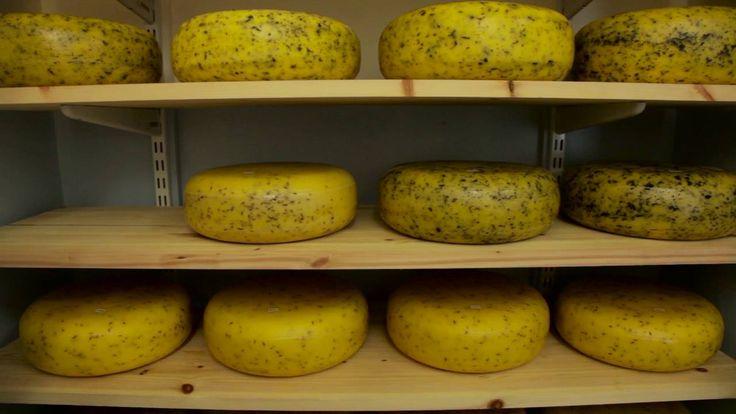 Gouda cheese made in Ireland
