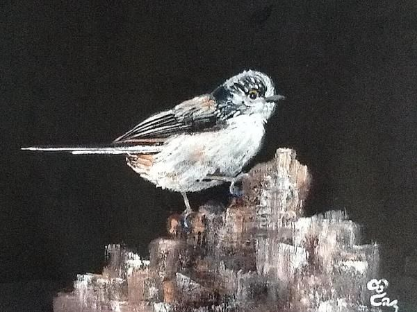 """Long-tailed tit. Acrylics on a canvas board. 16"""" x 12"""""""