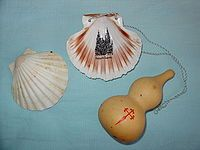 The scallop shell, often found on the shores in Galicia, has long been the symbol of the Camino de Santiago. Over the centuries the scallop shell has taken on mythical, metaphorical and practical meanings, even if its relevance may actually derive from the desire of pilgrims to take home a souvenir.