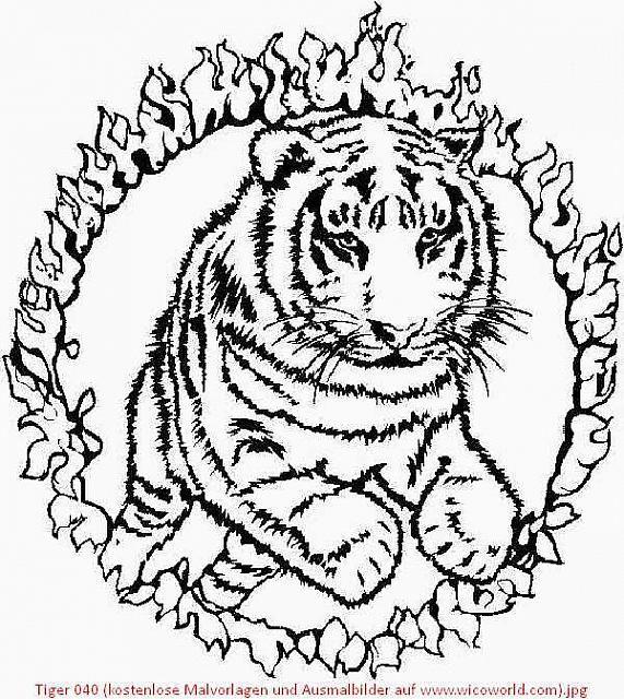 Kostenlose Ausmalbilder Tiger In 2020 Ausmalbilder Ausmalbilder Pferde Zum Ausdrucken Kostenlose Ausmalbilder